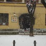 Piazza delle Antiche Repubbliche Marinare in Inverno